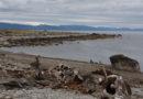 Ziemia Ognista (Tierra del Fuego) – w krainie ognia i lodu