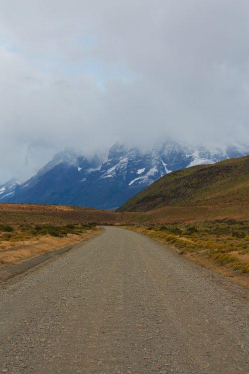Torres del Paine – w królestwie andyjskiego lwa