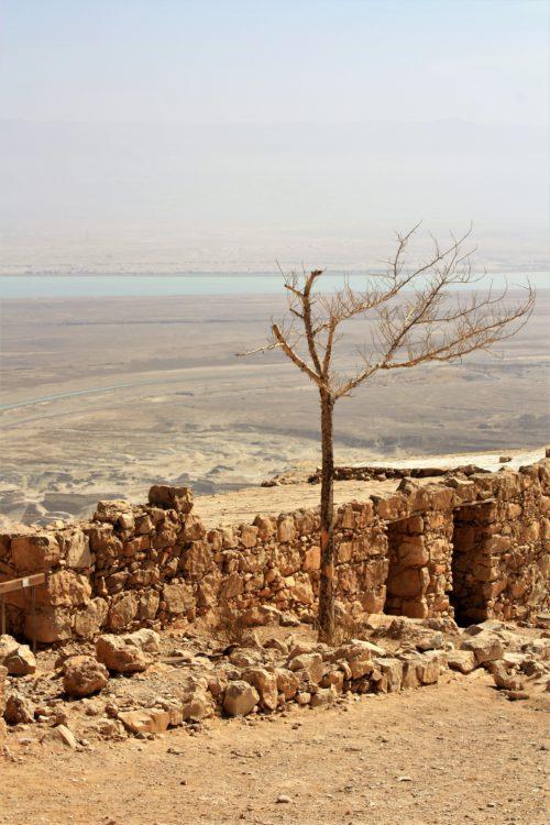 Masada – symbol heroicznej walki aż do końca