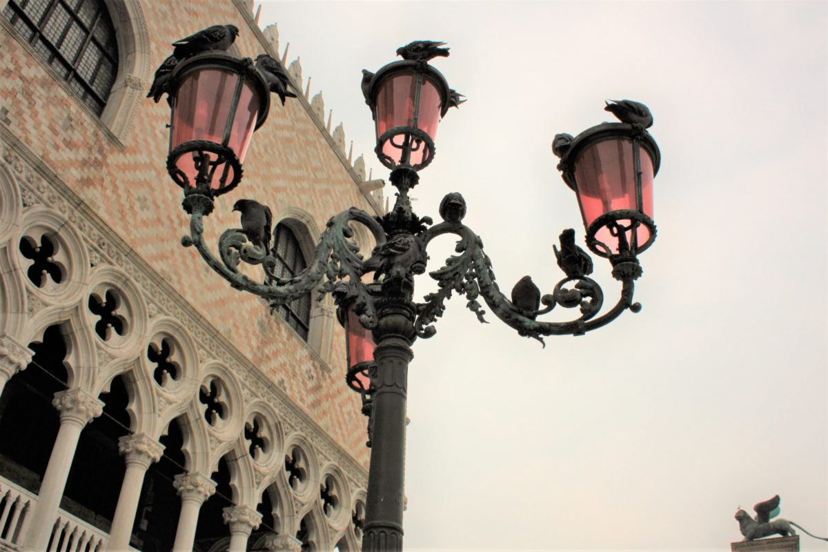 Gołębie i mewy są częstymi gośćmi na Placu Świętego Marka
