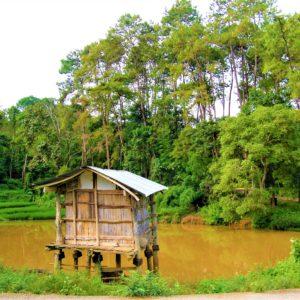 Plemiona Akha żyją zazwyczaj w niewielkich wioskach składających się z kilkudziesięciu rodzin