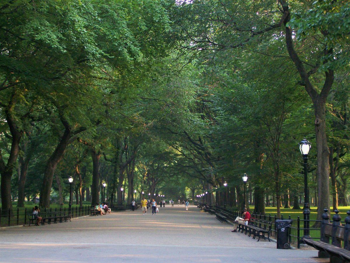 Szeroka aleja w Central Parku. Wzdłuż drewniane ławki