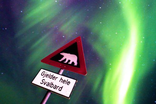 Uwaga na niedźwiedzie polarne. Zorza polarna nad wyspami Svalbardu