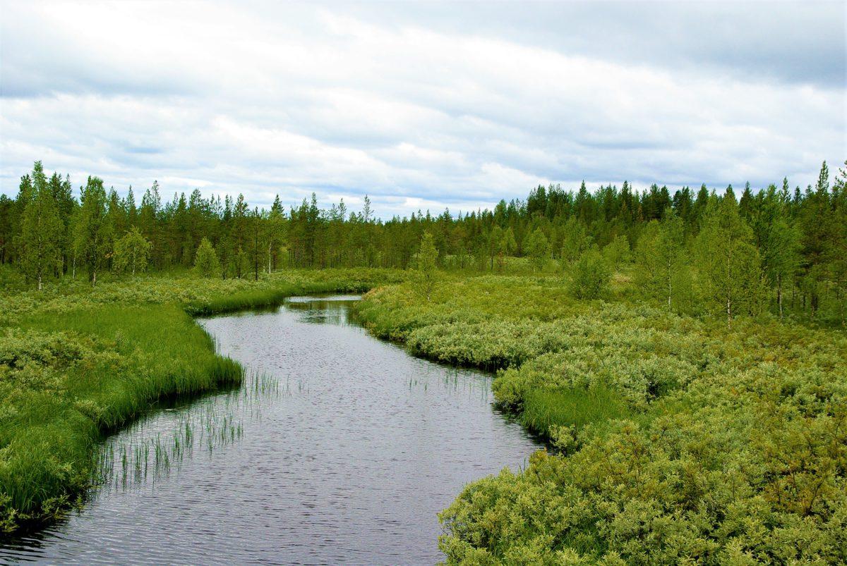 Laponia obejmuje cztery sąsiadujące ze sobą państwa: Norwegię, Szwecję, Finlandię i północno-zachodnią część Rosji