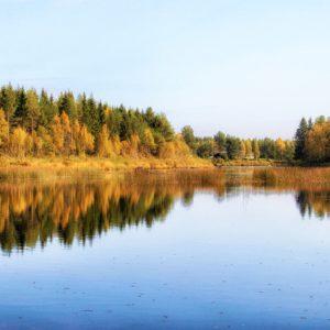 Laponia zachwyca surowym krajobrazem, dziewiczą, bo prawie nietkniętą przez człowieka przyrodą