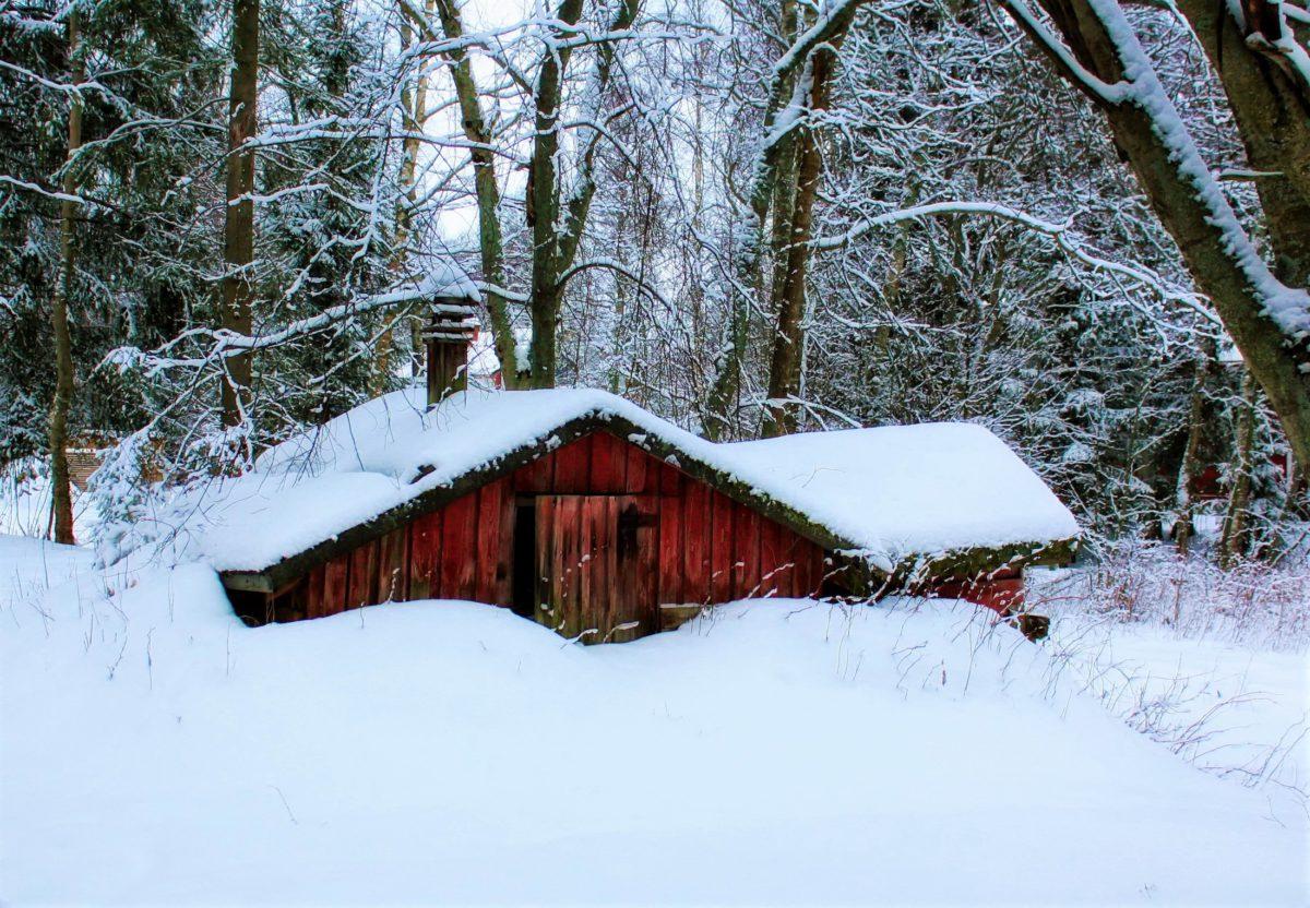 Laponia. Małe, drewniane chatki gdzieś daleko, w środku lapońskiej puszczy