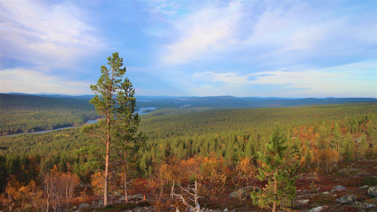 Laponia to setki tysiące kilometrów kwadratowych poprzecinane rzekami i krystalicznie czystymi jeziorami polodowcowymi