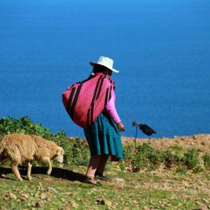 Potomkowie Inków