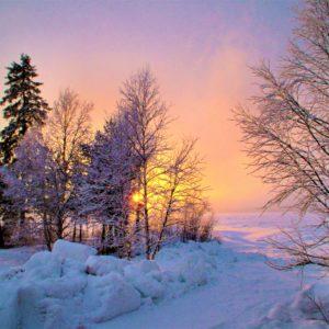 Lapońska zima