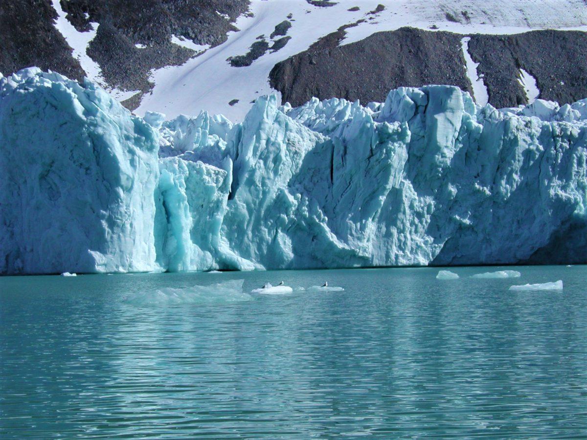 Wyspa Spitsbergen została odkryta już w XVI wieku stając się bazą wypadową dla połowu wielorybów