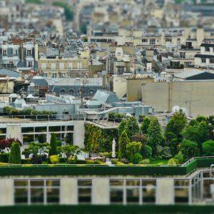 Zielone ogrody na dachach Paryża
